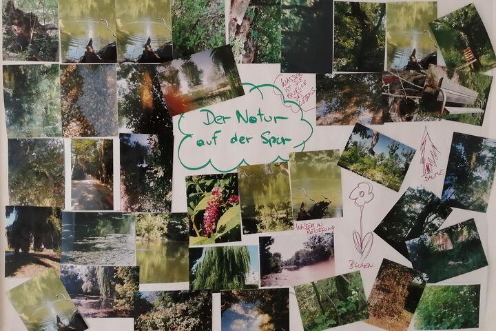 Einige der Schnappschüsse zieren die Wände im Obdach Handelskai. (Bild: FSW)