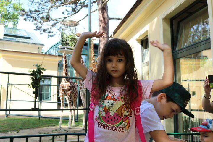 So groß sind Giraffen. (Bild: FSW)