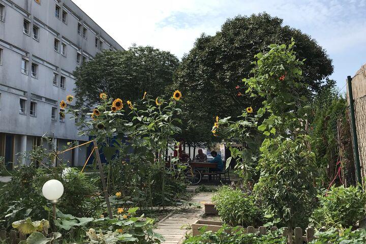 Der Garten, ein bei allen beliebter Pausenplatz (Bild: FSW)