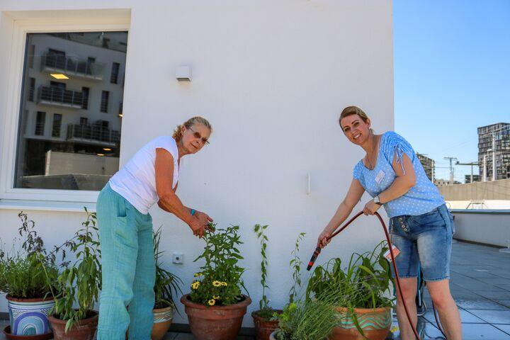 Brigitte S. und Betreuerin Loredana versorgten die Pflanzen gleich an ihrem neuen Zuhause. (Bild: FSW)